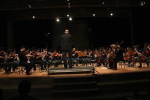 210 alunos são atendidos com a Orquestra Filarmônica de Paraisópolis (Foto: Francisca Rodrigues)
